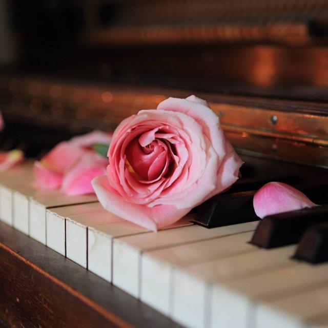 Večery u klavíru