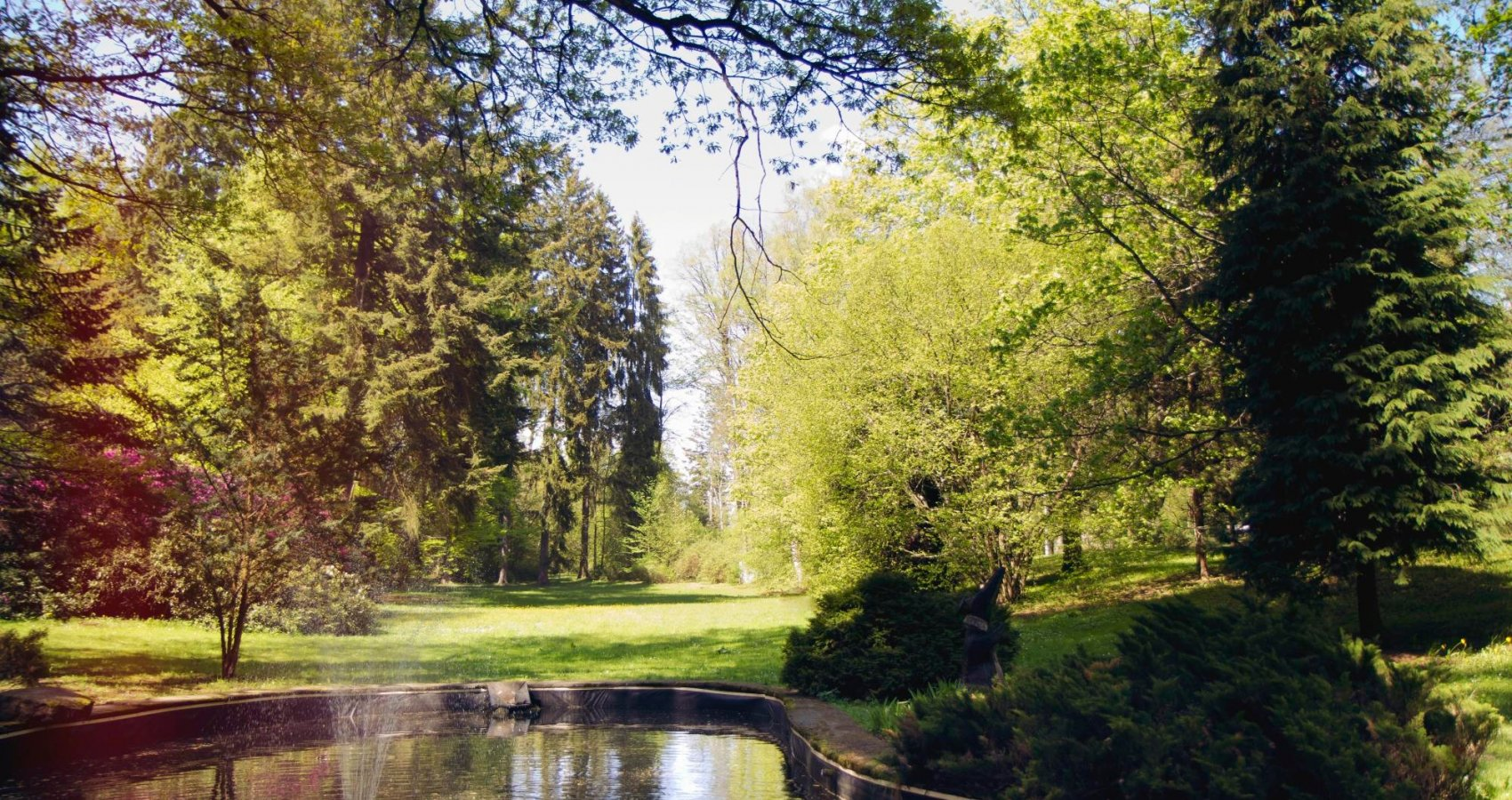 Jezírko v lázeňském parku
