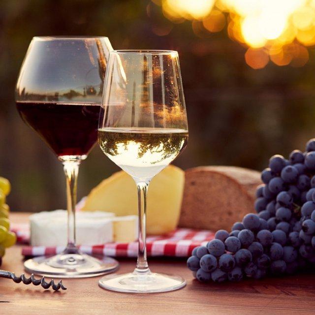 I. Lázeňské vinobraní